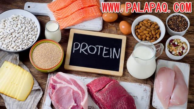 Kurangnya Protein pada Tubuh Memiliki Dampak Buruk